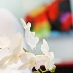 exclusive-loung-nagelstudio-dortmund-09
